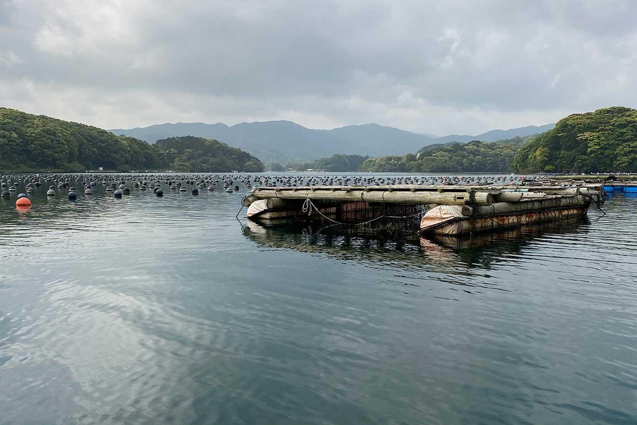 浮きや筏が浮いている大村湾